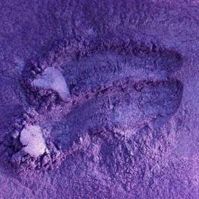 Afrykański Fiołek  - pigment perłowy